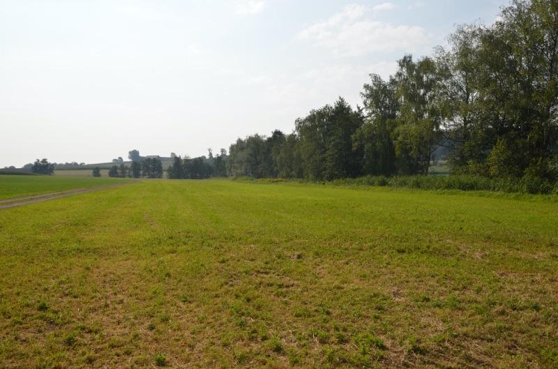 Das Äschi, eine intensiv bewirtschaftete Wiese vor den Bauarbeiten 2012