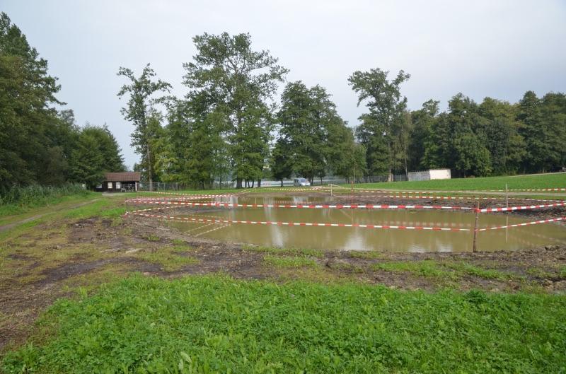 Das Äschi nach dem Bau der neuen Amphibientümpel 2012