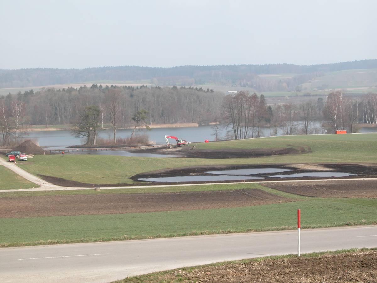 Im Riet 2003. Der Uferbereich wurde nach Süden ausgeweitet und zwei neue Amphibientümpel gebaut.